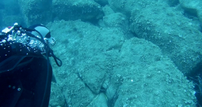 Diving Corsica